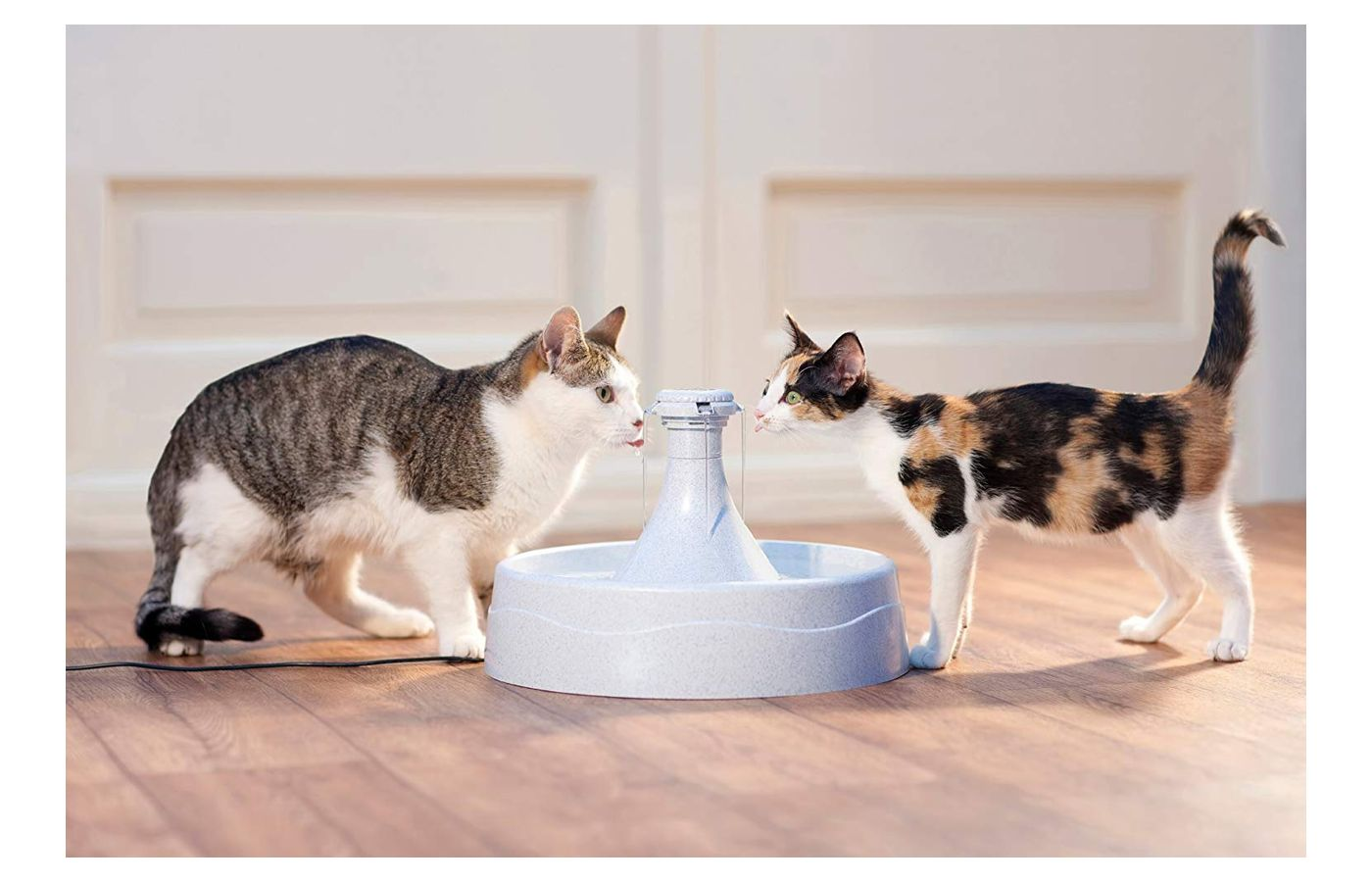 PetSafe Drinkwell 360 Plastic Pet Fountain