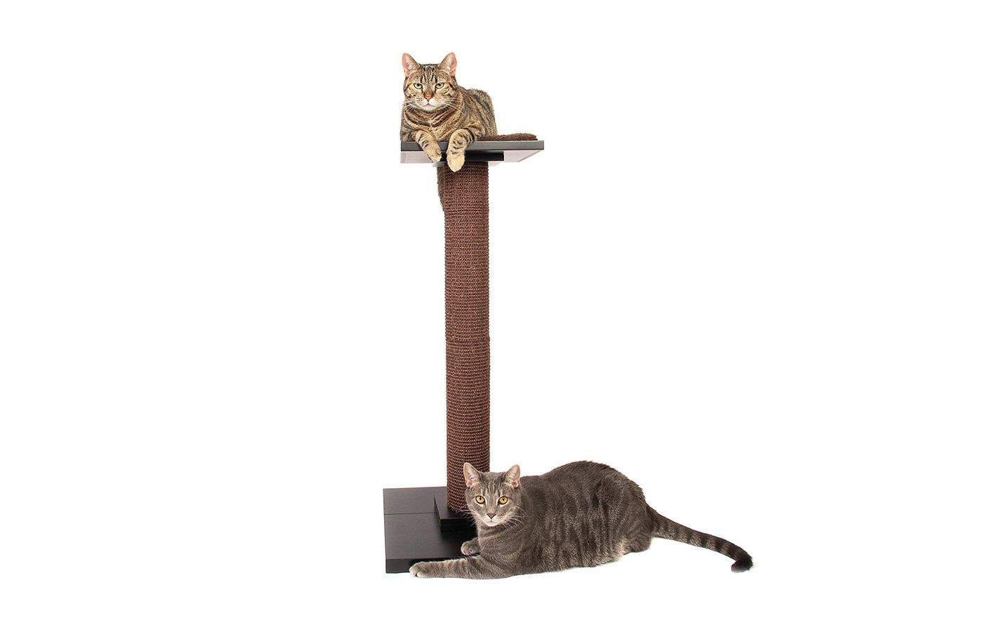 Ultimate Cat Scratching Post/Modern Cat Tree