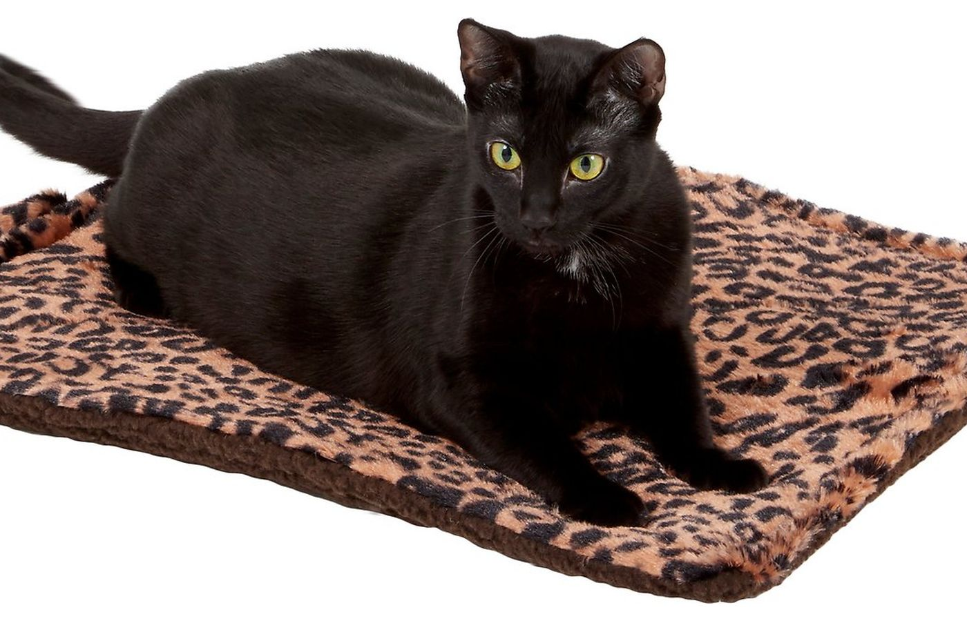 Downtown Pet Supply Thermal Cat Mat