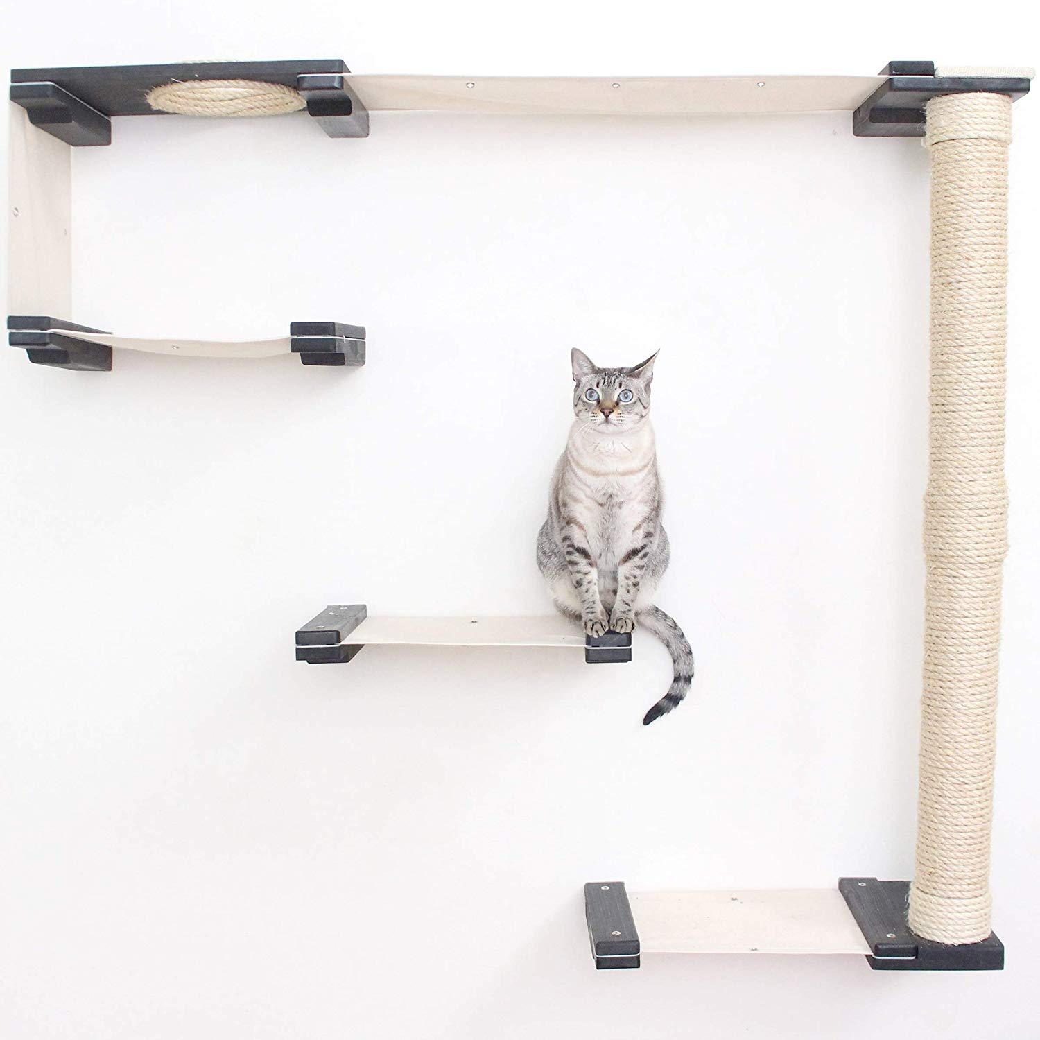 catastrophicreations cat tree shelves