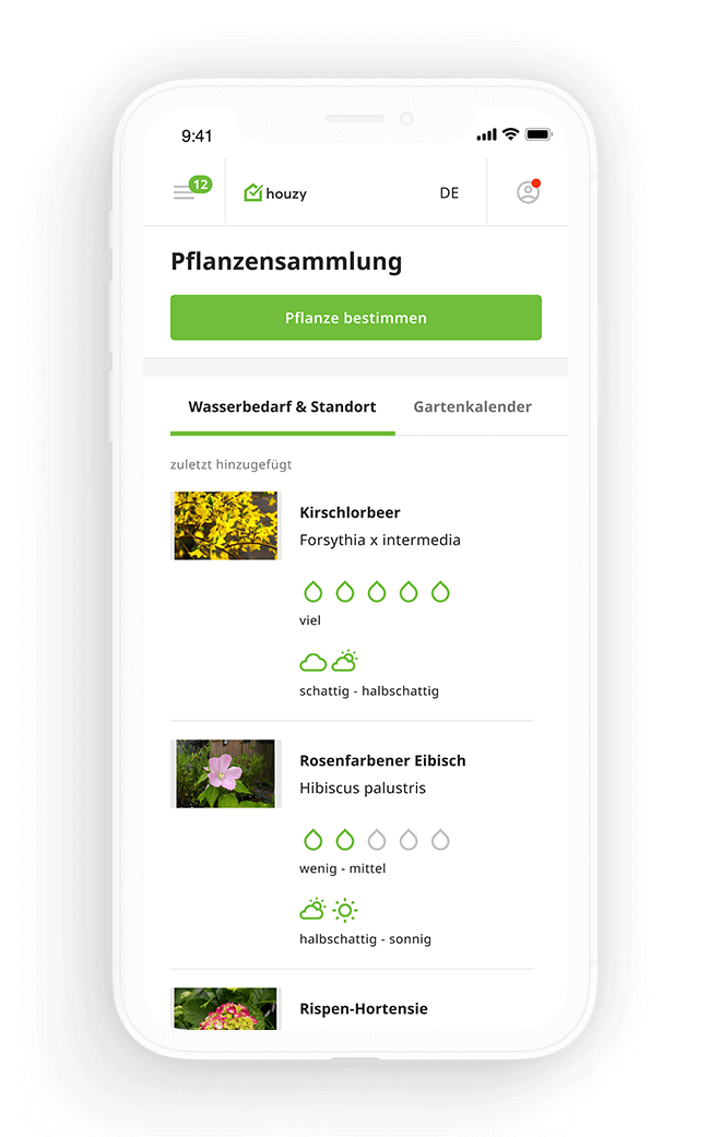 Pflanzenmanager Resultat