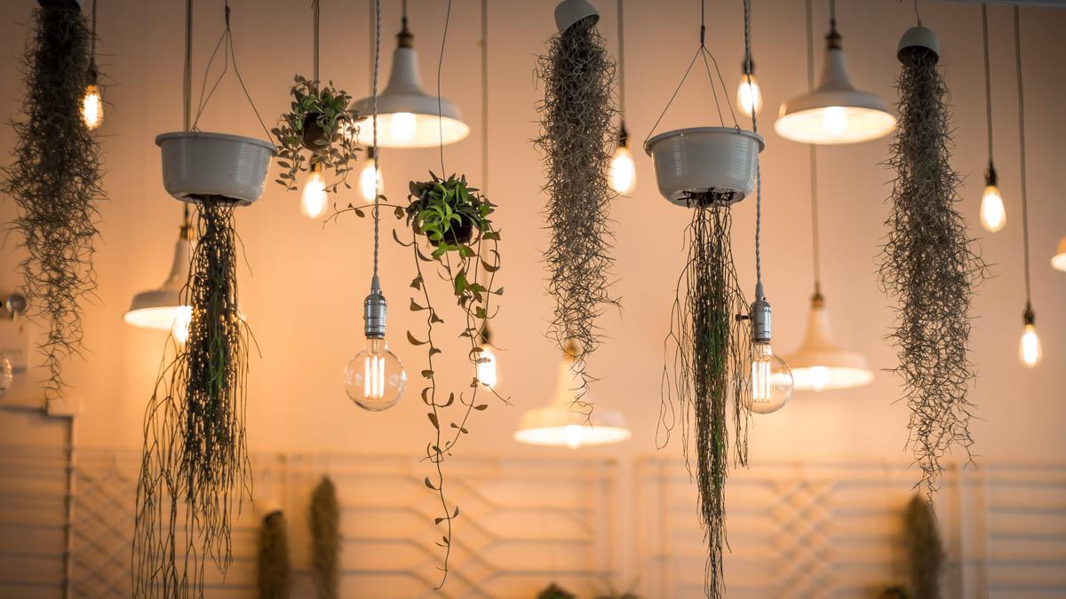 Lampe montieren: So hängen Sie Ihre Lampe einfach und sicher auf