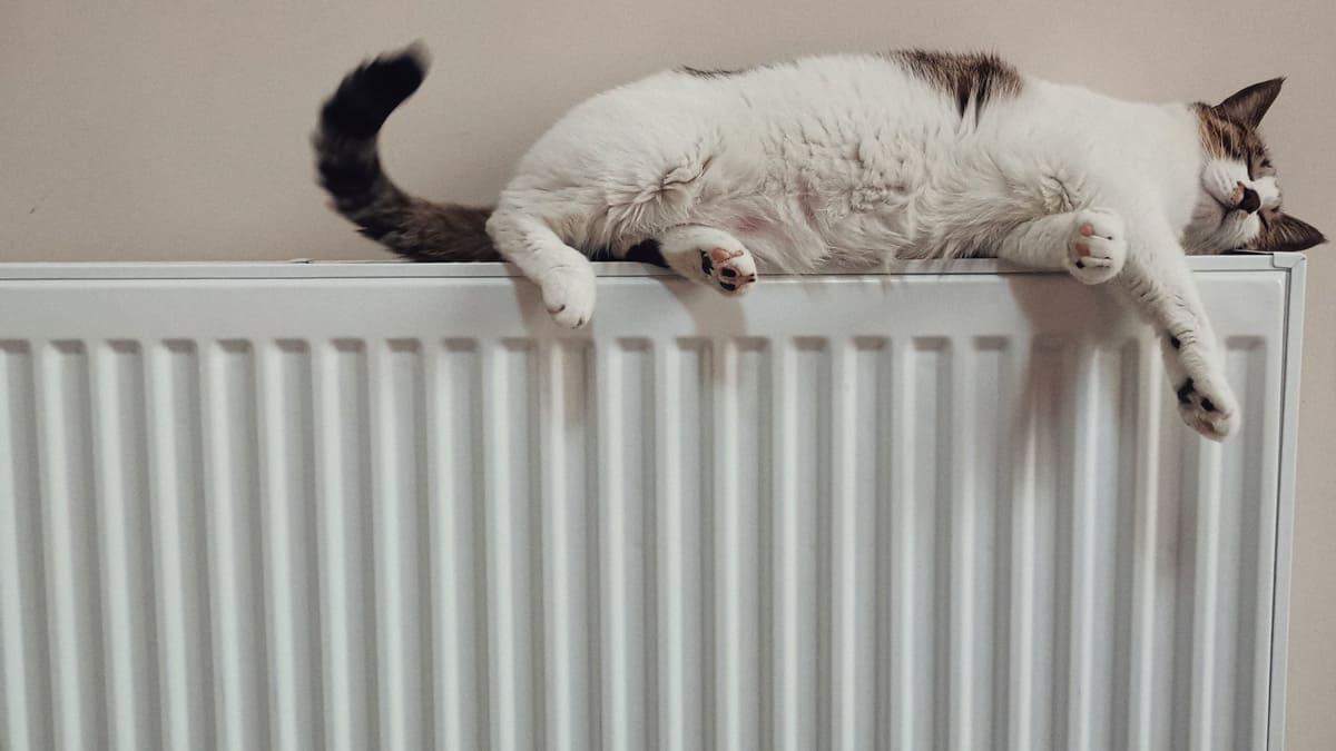 Energiespartipp: Passen Sie Ihre Wohlfühltemperatur in den einzelnen Räumen ein.