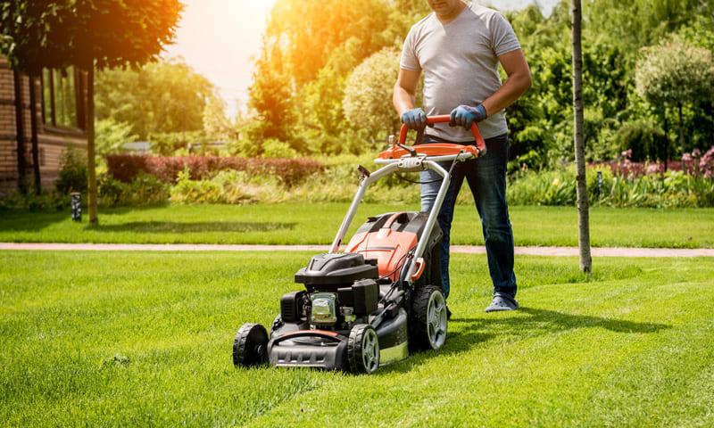Nachbarrecht:Mann mäht Rasen