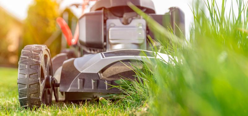 Rasen mähen: ein gepflegter Rasen braucht Zeit