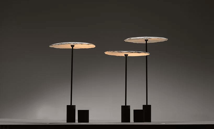 mycelium lights