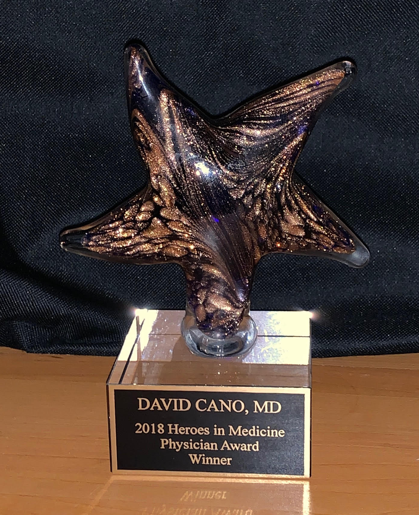 Heroes of Medicine Physician Award