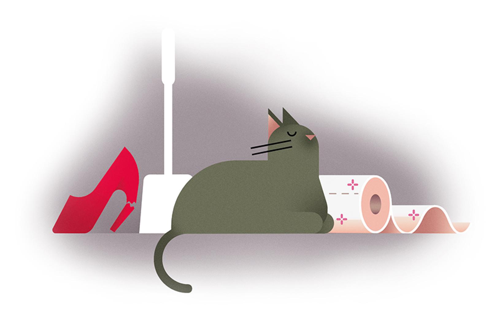 illustration cat finished
