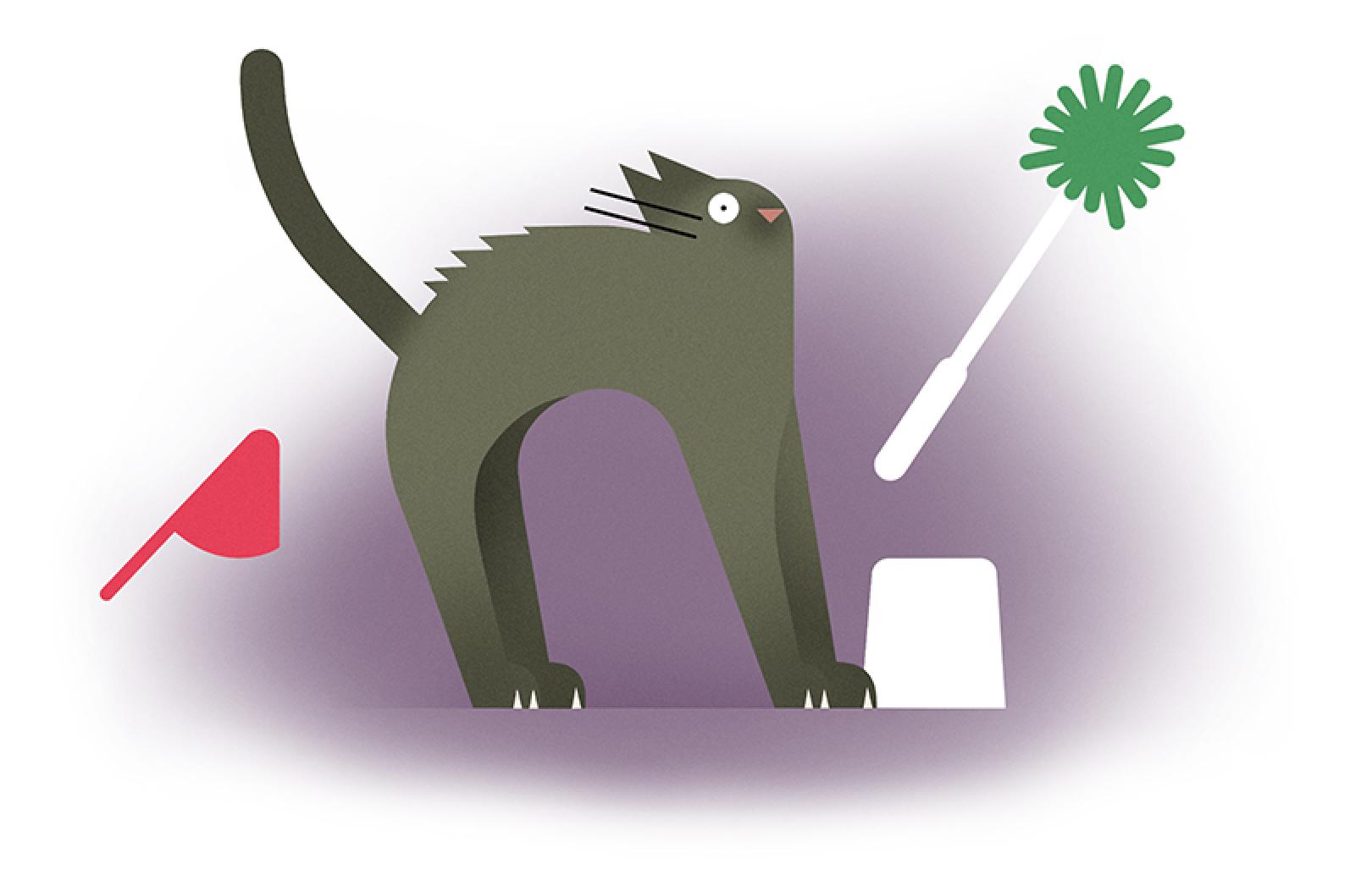 illustration cat crazy