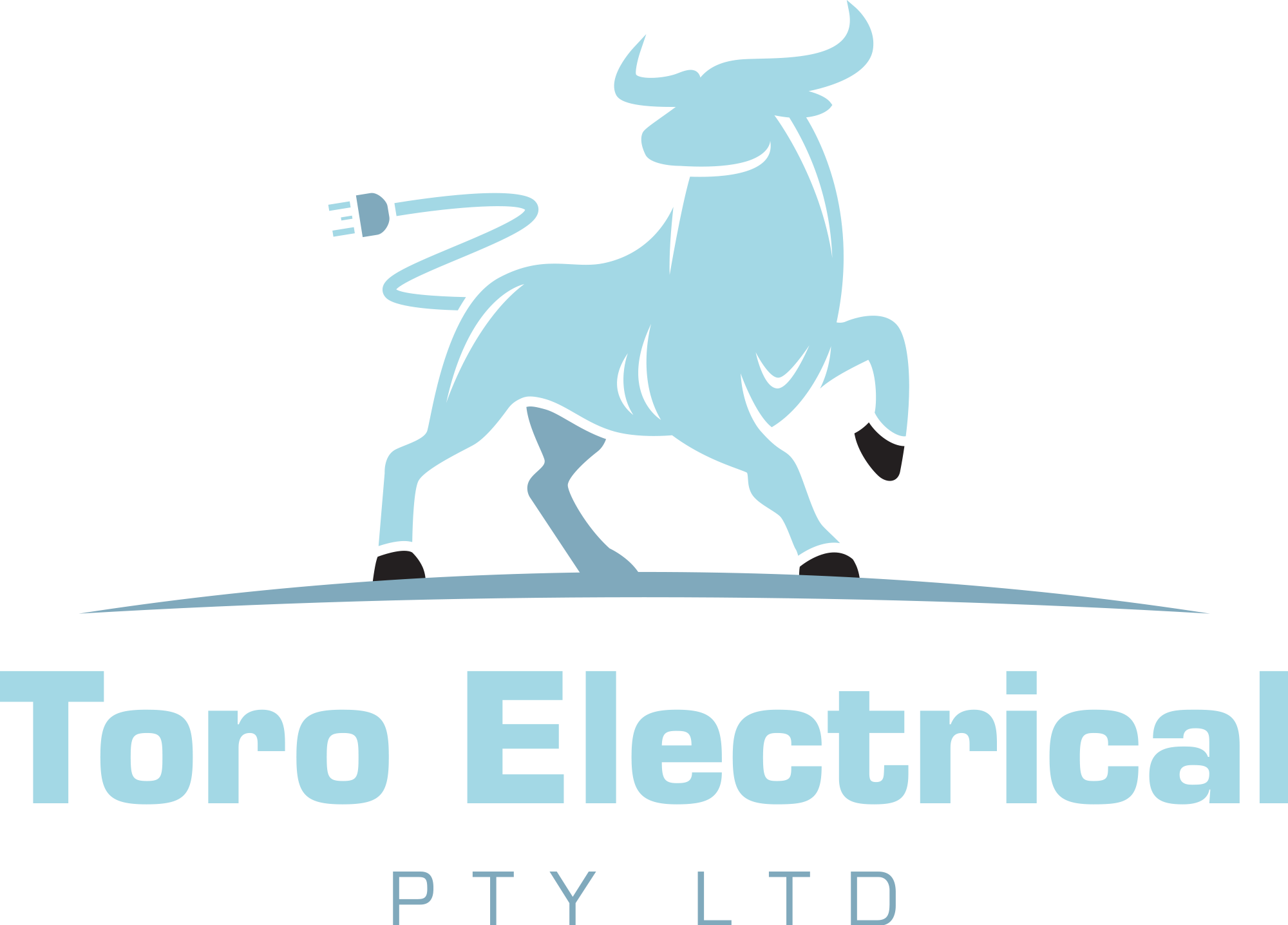 Toro Electrical