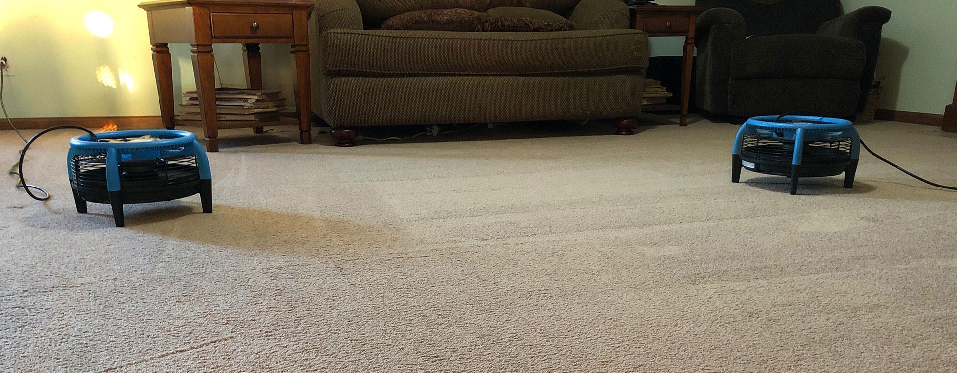 Speedy carpet drying process