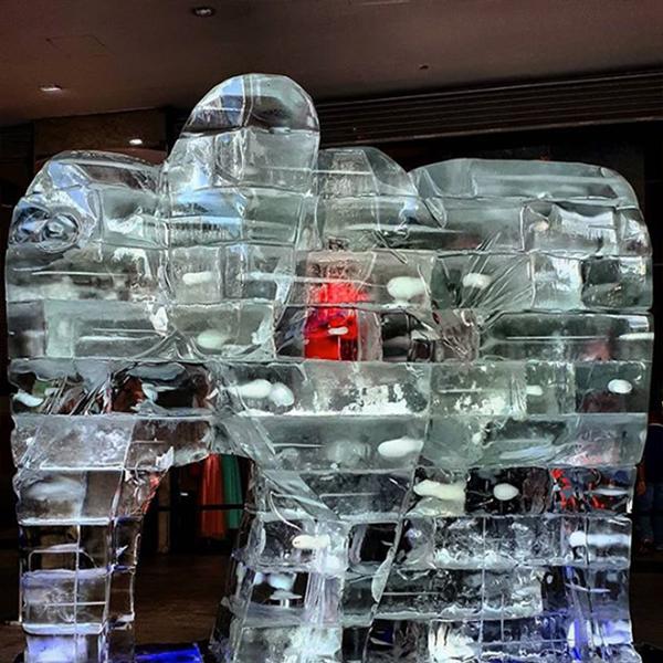 coração de elefante feito de gelo por Guilherme Palmerio na av. Paulista Sao Paulo