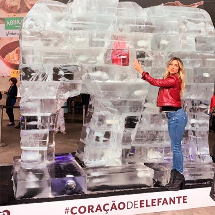 giovanna ewbank elefante de gelo Guilherme Palmerio av Paulista
