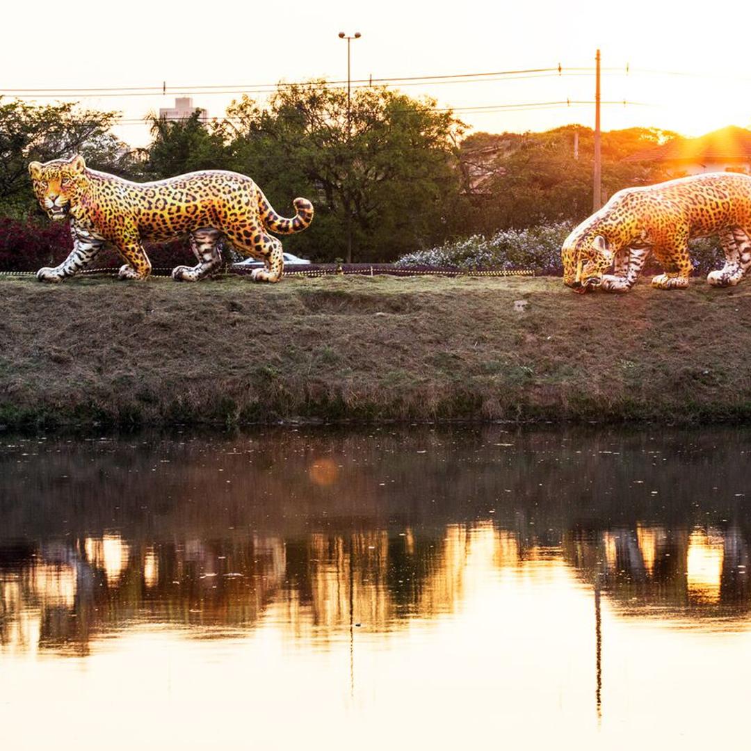 Casal de onças inflaveis na margem do Rio Pinheiros