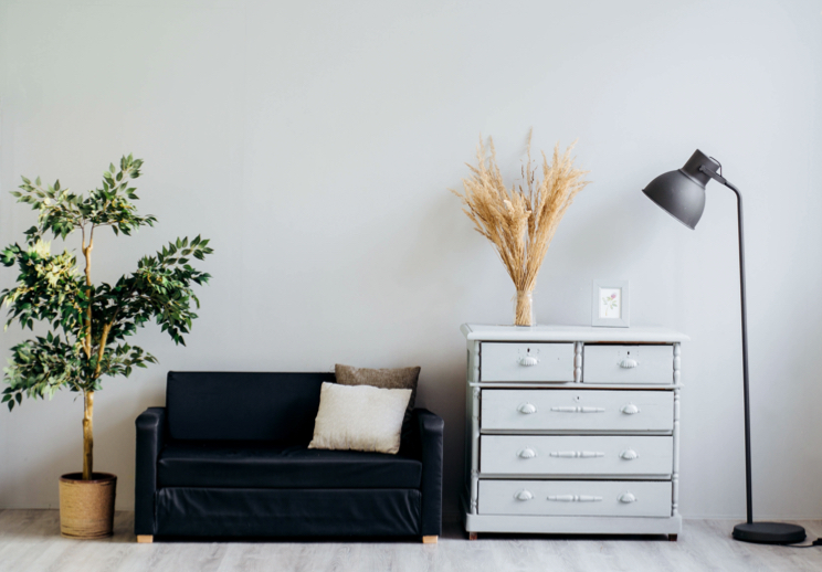 Minimalistic interior design showing a plant, couch, dresser and lamp