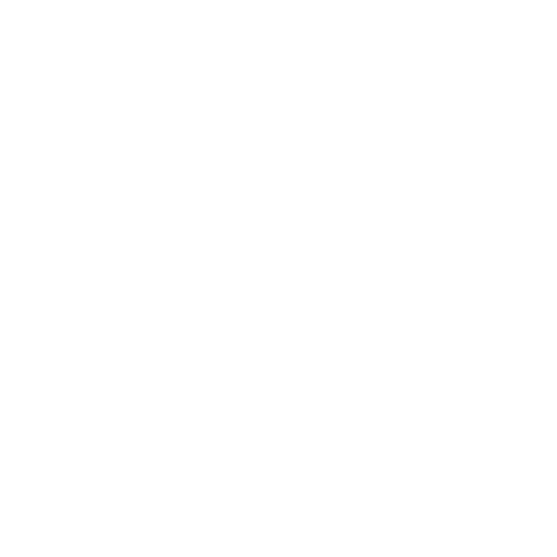 white instagram camera icon
