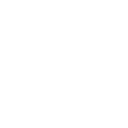 white twitter bird icon