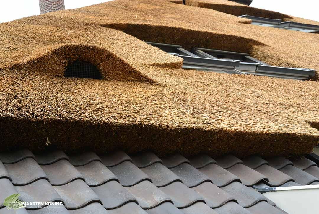 Stolp met rietgedekt dak