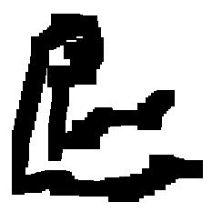 Gasellin kuva