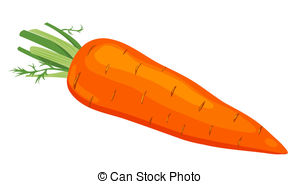 Image of a carrot