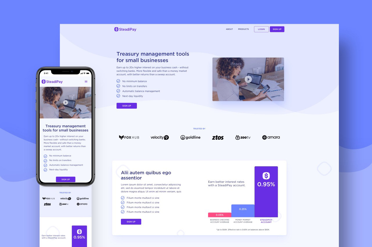 SteadiPay high-fidelity desktop and mobile mockups for product page redesign