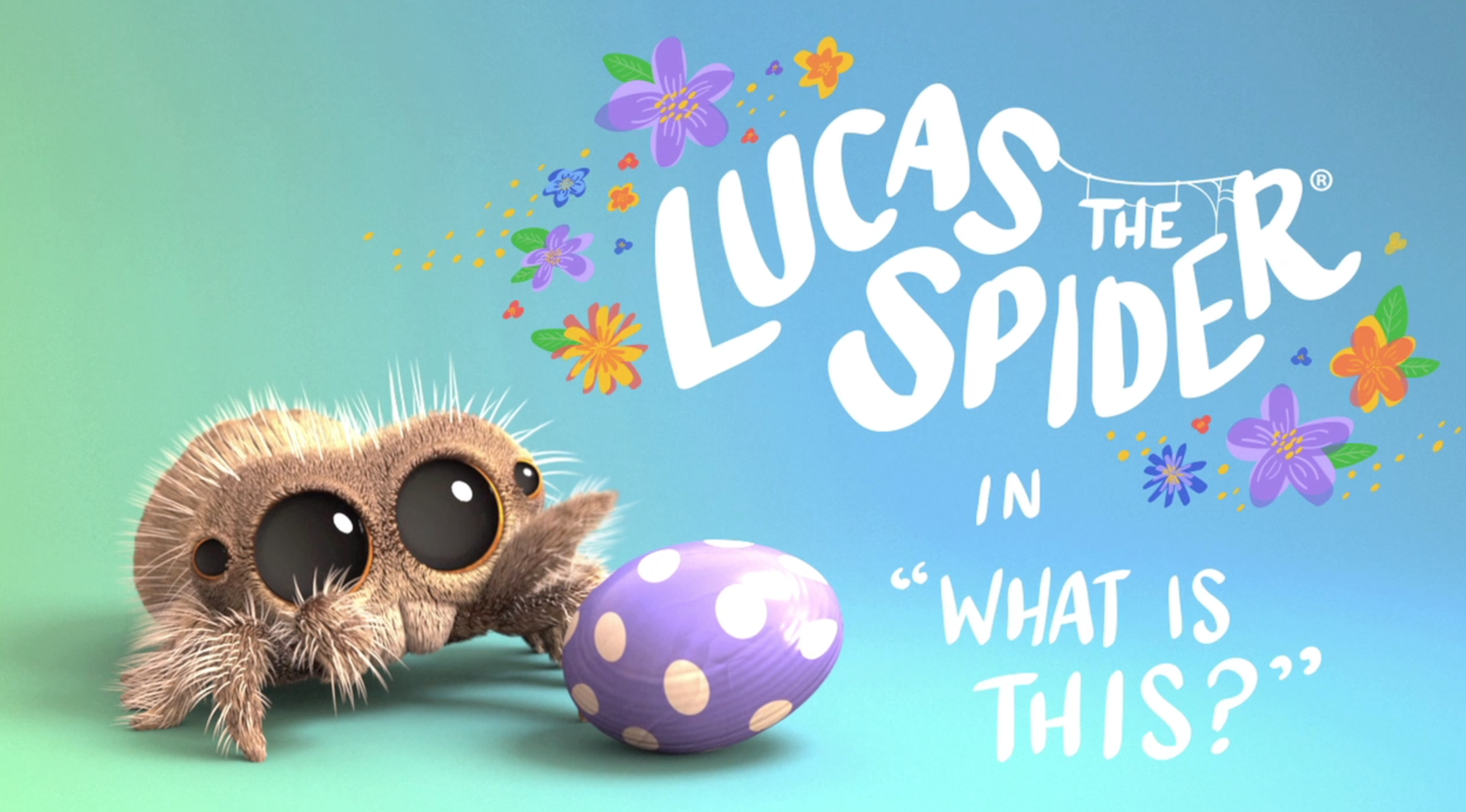 Lucas the Spider - What is This?