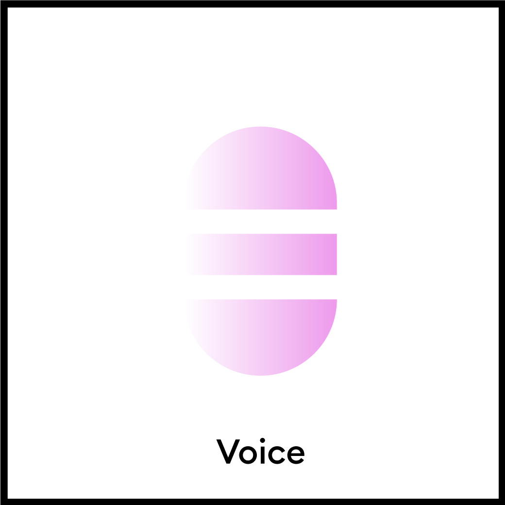 Branding Element: Voice