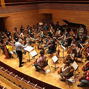 Yehudi Menuhin orchestra image