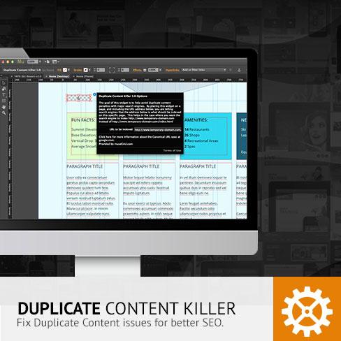Duplicate Content Killer