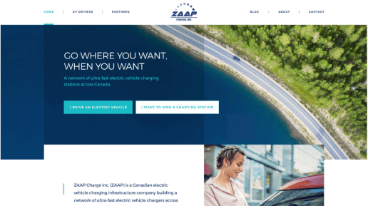 ZAAP homepage screenshot
