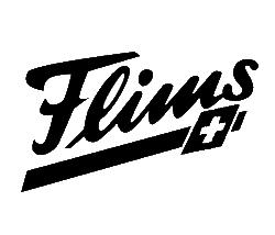 flims laax falera logo, helvet media, dino reichmuth