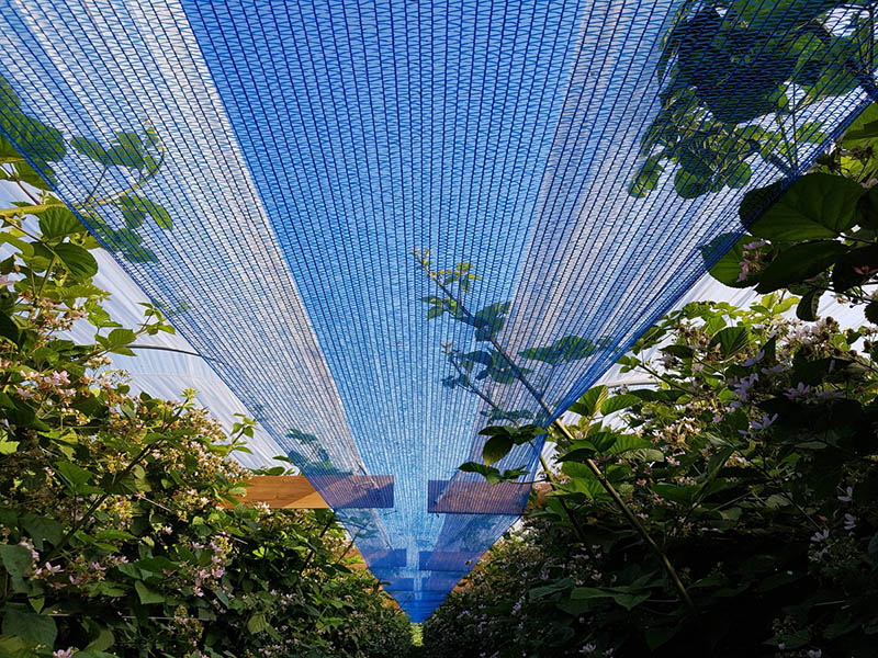 Vinea Sunshade Netting