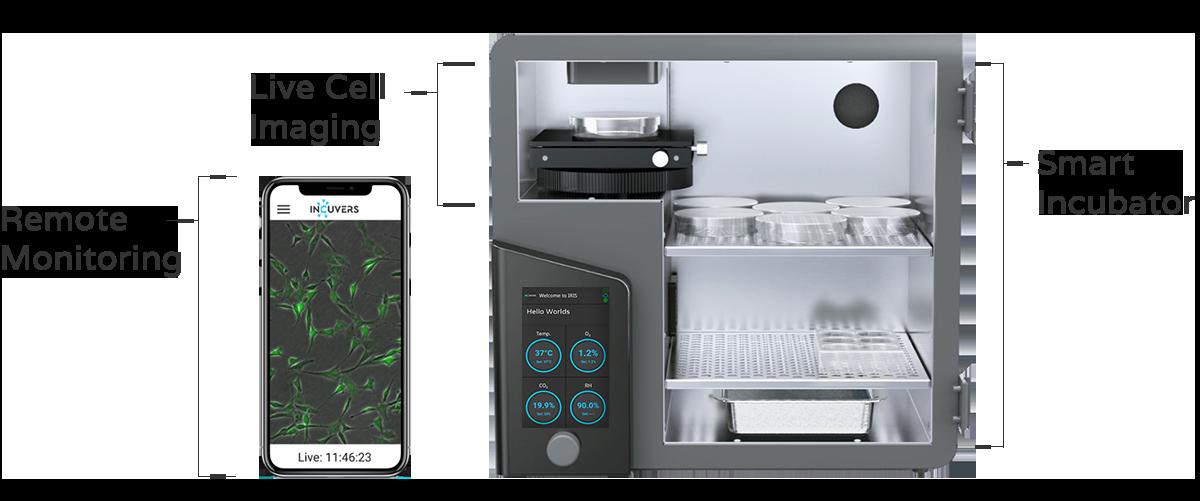 Hypoxic incubator layout