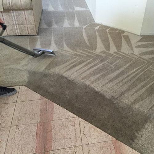presto carpet cleaning service