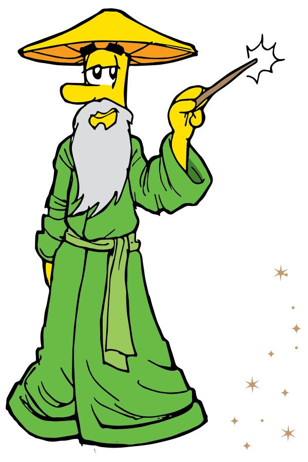 Wizard Sponsor