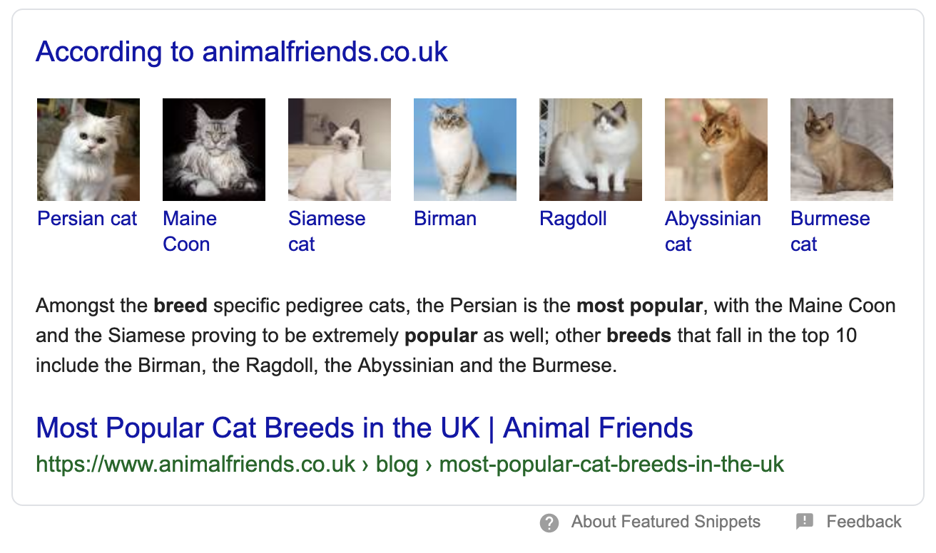 Google Featured Snippet for Popular Cats