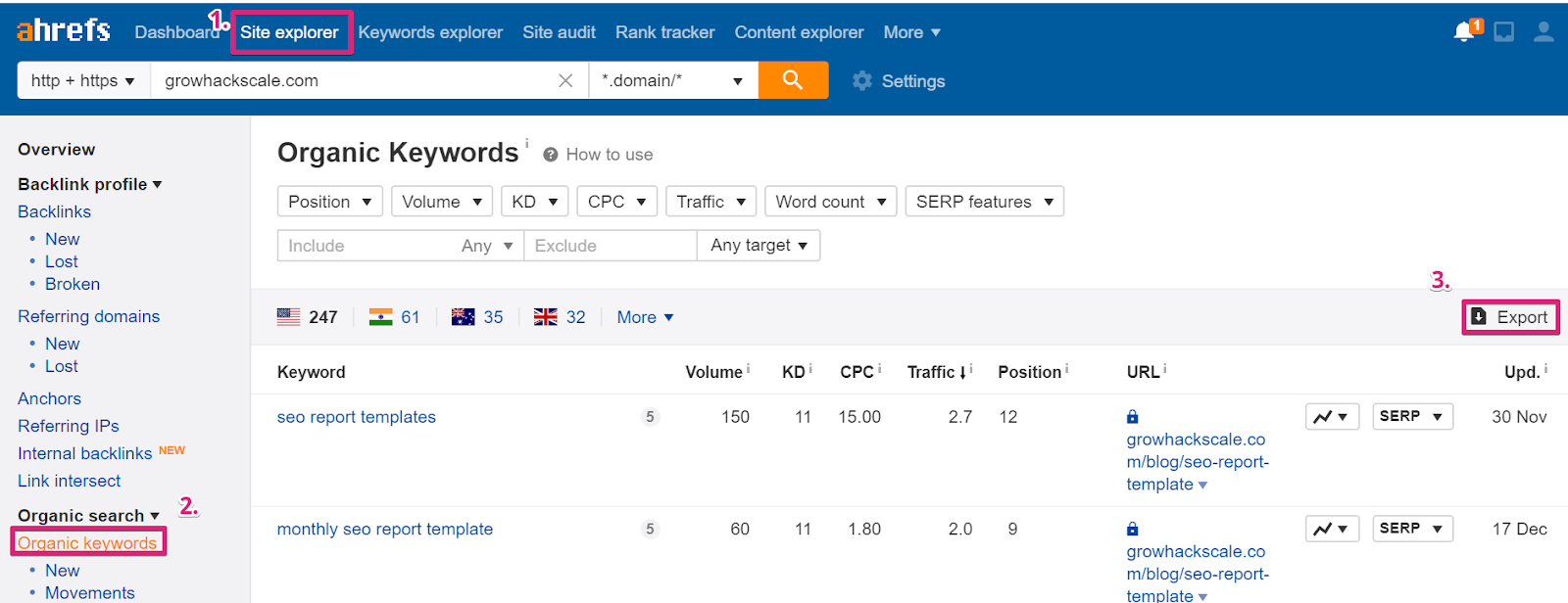 screenshot ahrefs organic keyword report - keyword cannibalization