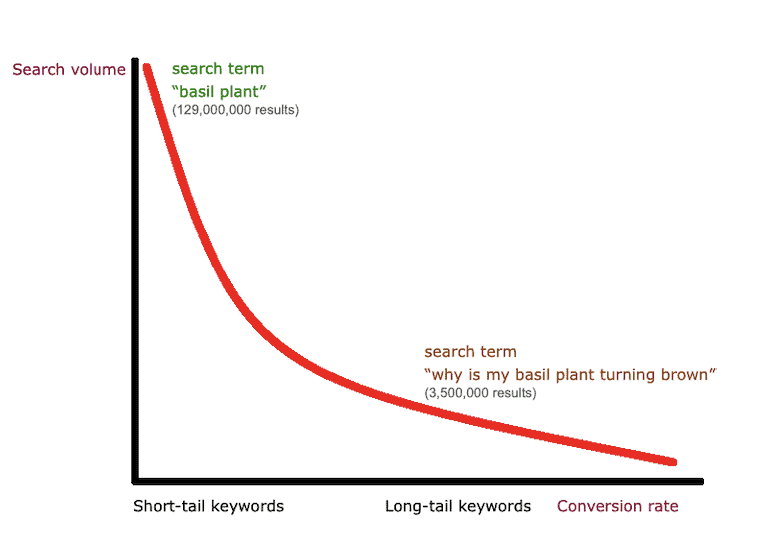 A graph comparing the search volume of short-tail keyword 'basil plant' and long-tail keyword 'why is my basil plant turning brown'