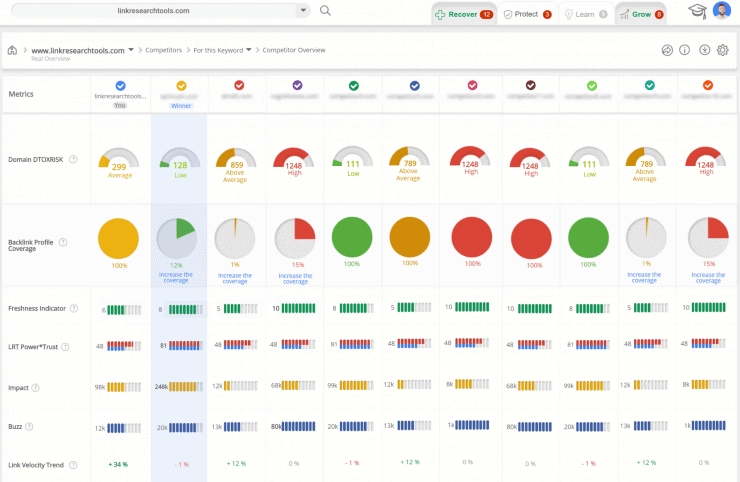Link-Research-Tools Sample Dashboard - Best Backlink Checker Tools