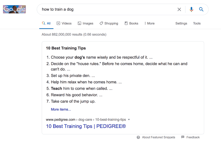 Google search results for how to train a dog