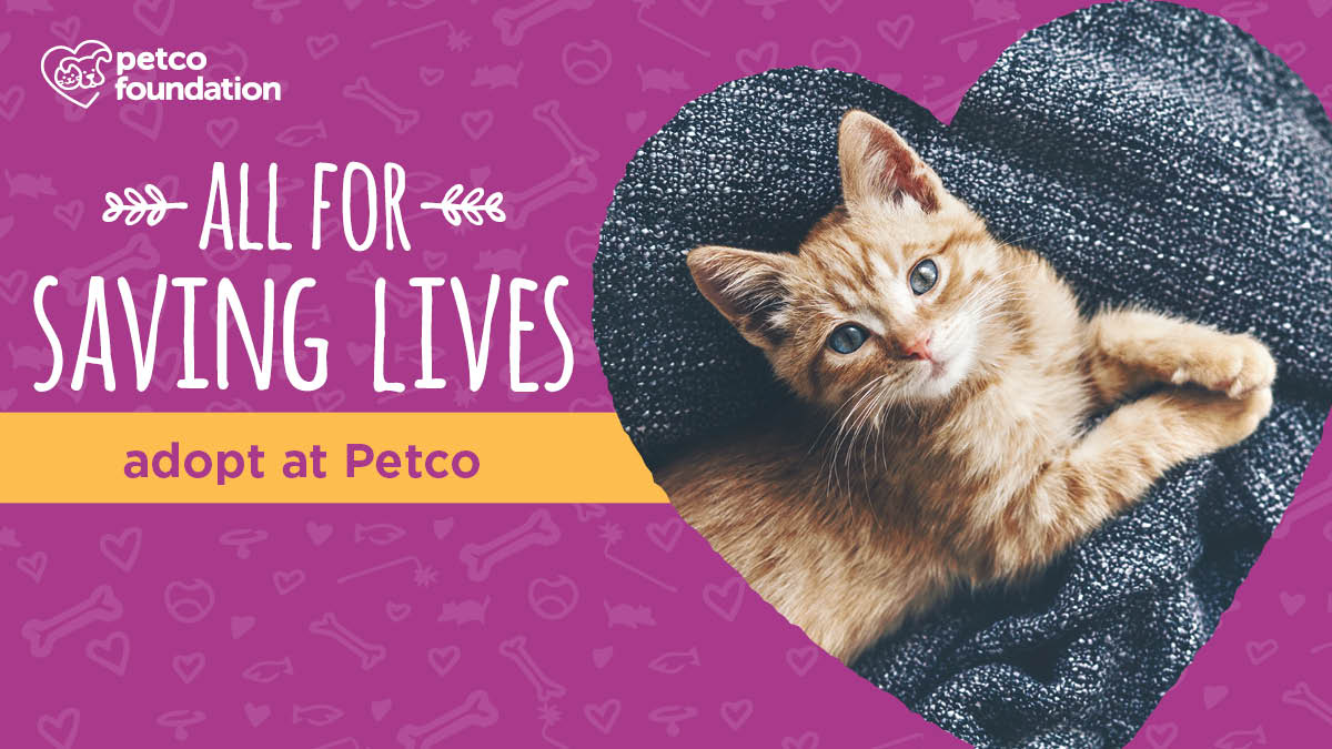National Petco Adoption Events