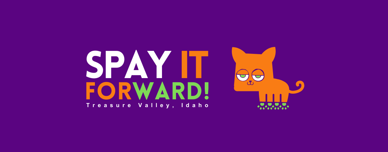 Spay It Forward!