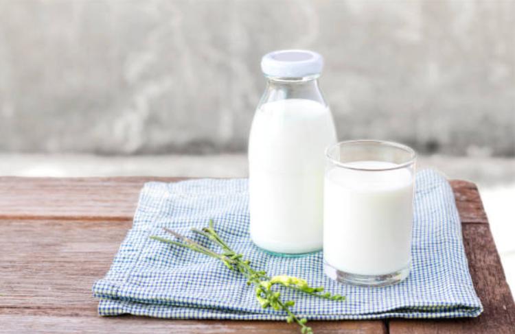 Cách làm sữa chua từ sữa tươi