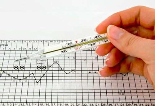 Cách tính ngày rụng trứng bằng cách đo thân nhiệt