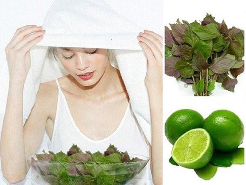 Cách trị mụn bằng lá tía tô tác dụng nhanh giúp da căng mịn sạch sẽ
