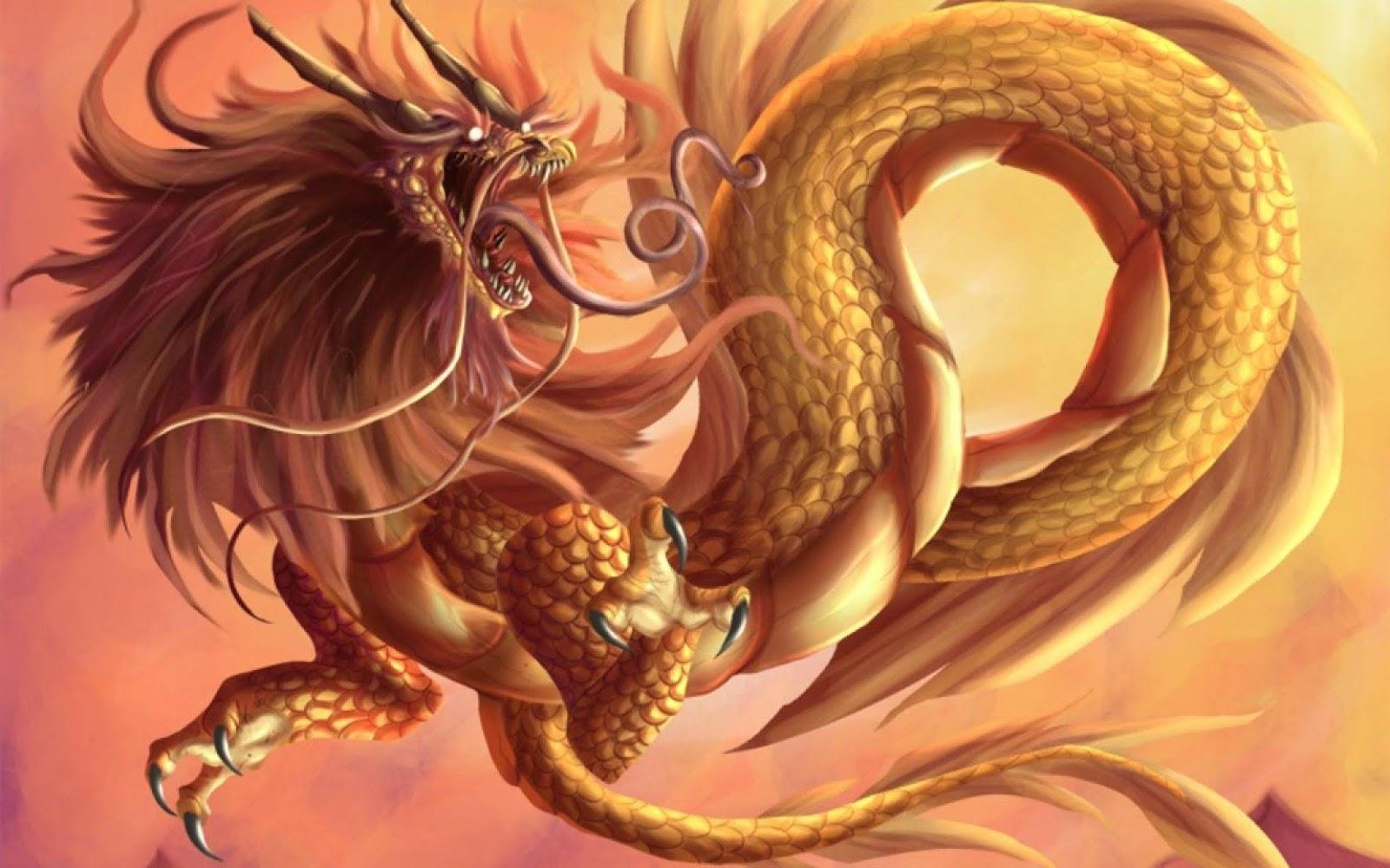 Hình ảnh Chân Thực Về Con Rồng
