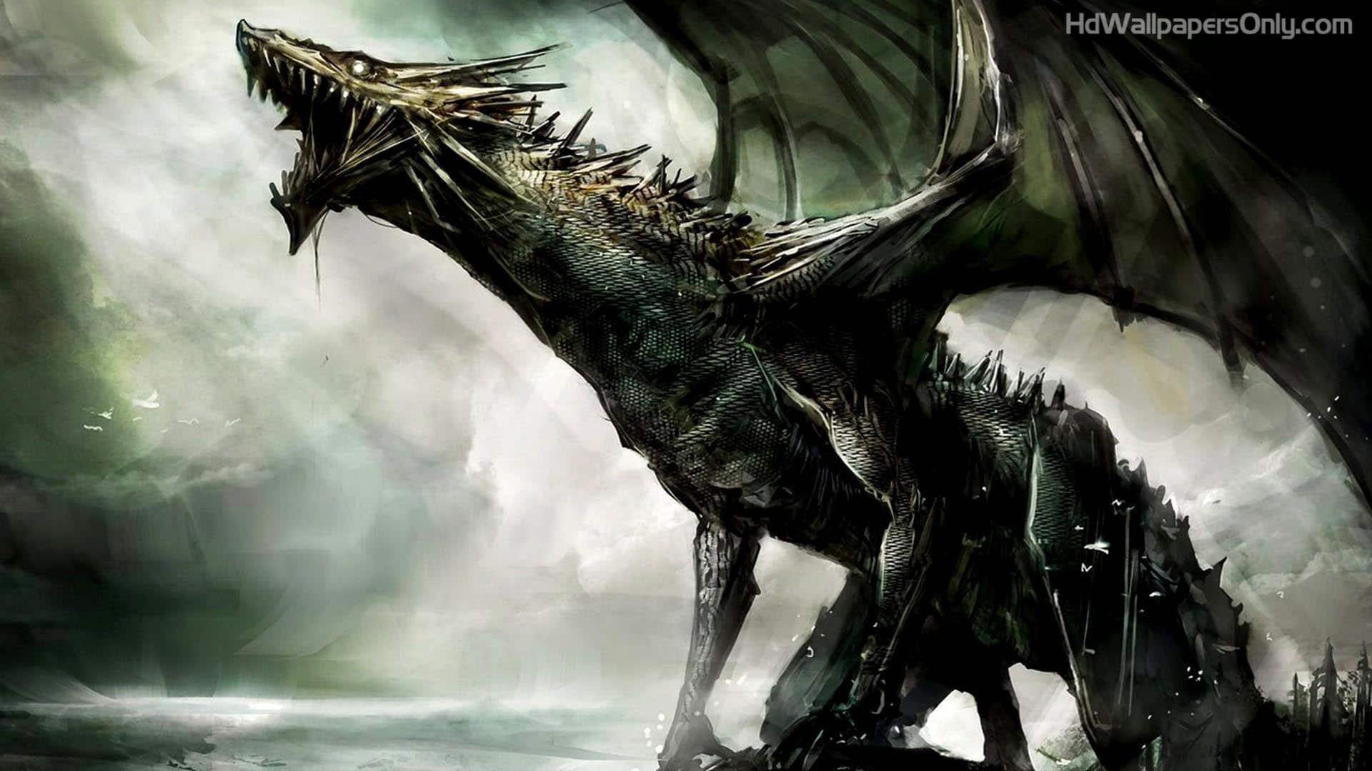 Rồng đen đẹp nhất