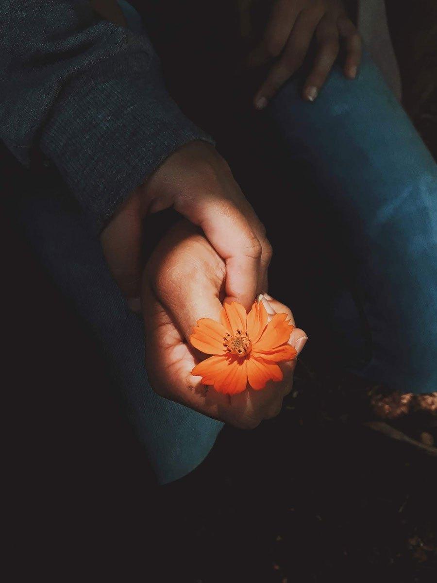 Hình ảnh nắm tay rất đẹp