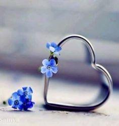 @Sharuana @haroon498 @Fifonka13 @eluniadb @solnefalk @eagle_bmw @NinaNebo @nksharma60 @chickllett @Sitaravirgo Ngày Valentine