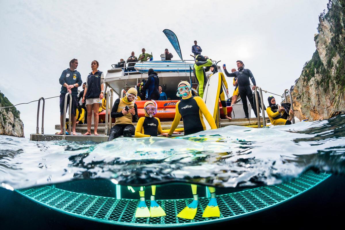 NZ Underwater Association